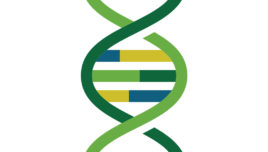Careers in Genetics: Bioinformatician